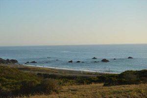 bodega-bay-beach