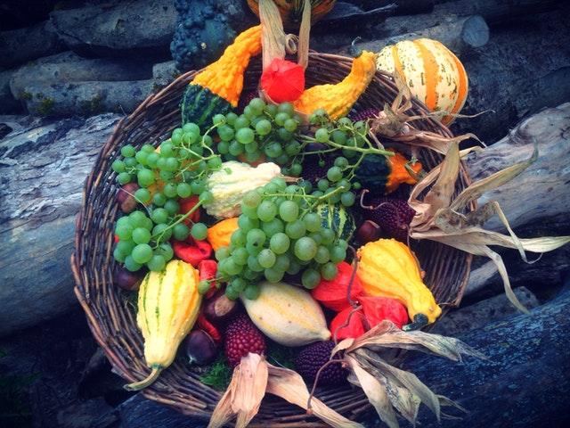 bodega-bay-farmers-market